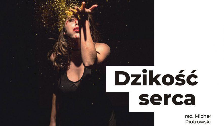 Dzikość Serca - Krasnystaw